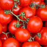 Tomates de conesa