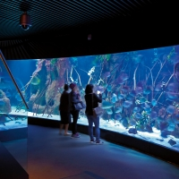 Art in a oceanographic centre, an Atelier project