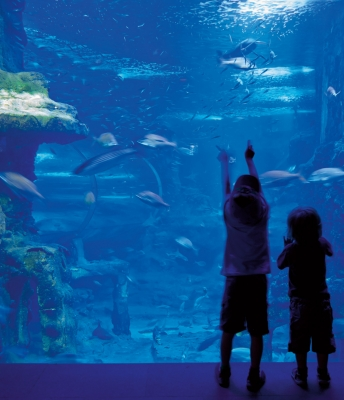 Centro Oceanográfico, en comunión con el mar